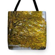 A Tree With Golden Leaves And A Park Tote Bag by John Short