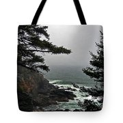 A Tricky Acadian Cove Tote Bag by Skip Willits