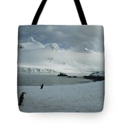 A Trio Of Chin Strap Penguins Amble Tote Bag