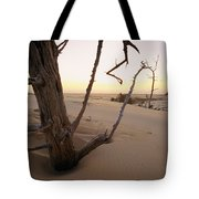A Twilight View Of Drift Wood Tote Bag