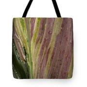 A Varigated Leaf Cast-iron Plant Tote Bag