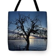A View At Dawn Of A Silhouetted Tree Tote Bag