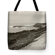A View Central California Coast Tote Bag
