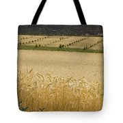 A View Of A Summer Field Of Wheat Tote Bag