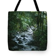 A View Of A Tropical Stream In El Tote Bag