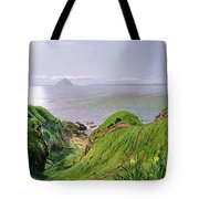 A View Of Ailsa Craig And The Isle Of Arran Tote Bag