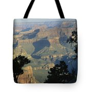 A View Of The Grand Canyon Tote Bag