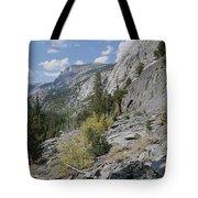 A View Through Goddard Canyon Tote Bag