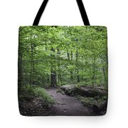 A Walk In The Catskills Tote Bag