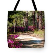 A Walk In The Springtime Woods Tote Bag