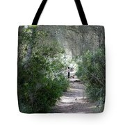 a walk about fairy wood - Mediterranean autumn forest Tote Bag