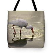 A White Ibis Probes The Mud Tote Bag