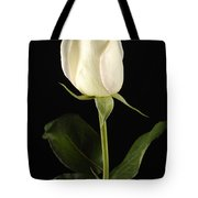 A White Rose Rosaceae Tote Bag