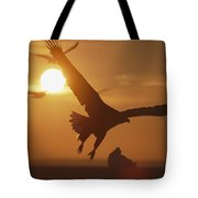 A White-tailed Eagle In Flight Tote Bag
