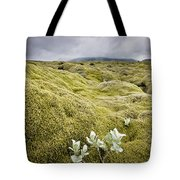 A White Wildflower Growing On A Rugged Tote Bag