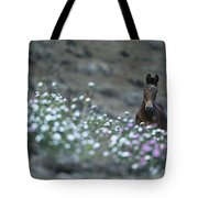 A Wild Horse On A Wildflower Covered Tote Bag