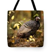 A Wild Turkey Hen In The Woods Tote Bag