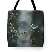 A Willow Tit Parus Montanus Perches Tote Bag