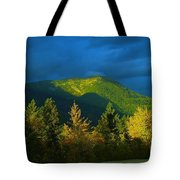 A Winding Autumn Road  Tote Bag