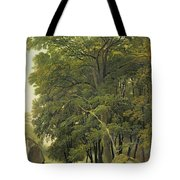 A Wooded Landscape  Tote Bag
