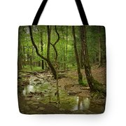 A Woodland Stream In Cades Cove No.472 Tote Bag