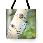 A Woodpeck Behind An Eye Of A Tree Tote Bag