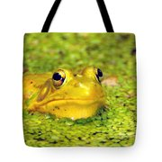 A Yellow Bullfrog Tote Bag