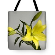 A Yellow Lily Lilium Canadense Tote Bag