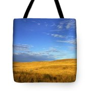 Abandoned House On The Prairies Tote Bag