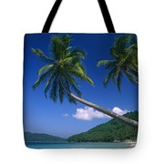 Abduls Beach Tote Bag