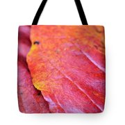 Abstract Dogwood In Autumn Tote Bag