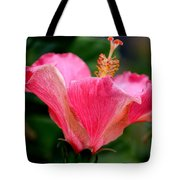 Abundantly Pink Tote Bag
