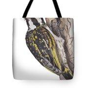 Acacia Pied Barbet Tote Bag
