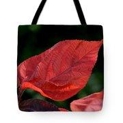 Acalypha Tote Bag