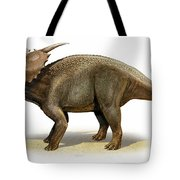 Achelousaurus Horneri, A Prehistoric Tote Bag