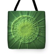Actinophyrs Lm Tote Bag