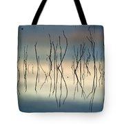 Acuatic Graphics Tote Bag
