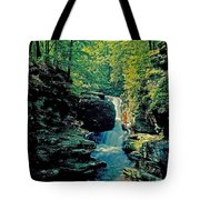 Adams Falls Tote Bag