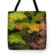 Adirondack Autumn Tote Bag