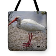 Adult White Ibis Tote Bag