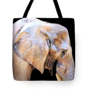 African Babe Tote Bag