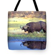 African Cape Buffalo, Photographed At Tote Bag by John Pitcher
