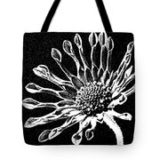 African Daisy In Black And White Tote Bag