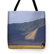 African Elephant In Ngorongoro Crater Tote Bag