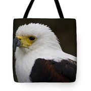 African Fish Eagle 1 Tote Bag