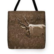 African Grassland Feeder Tote Bag