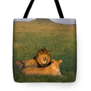 African Lion Panthera Leo Male Tote Bag