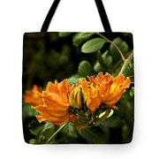African Tulip Tree Tote Bag