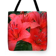 After A Spring Shower Tote Bag