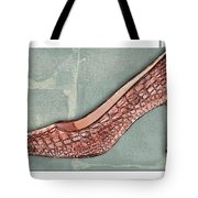 After A While Crocodile Pumps Tote Bag